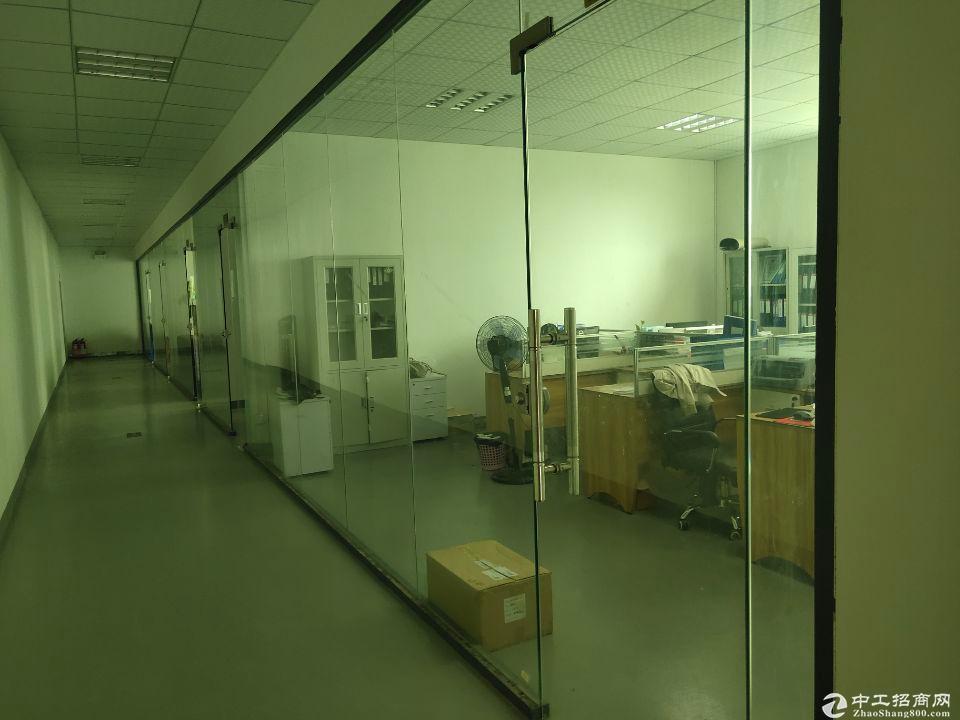 龙华大浪新出1000平精装厂房办公仓库出租,无转让费面积非常实在。