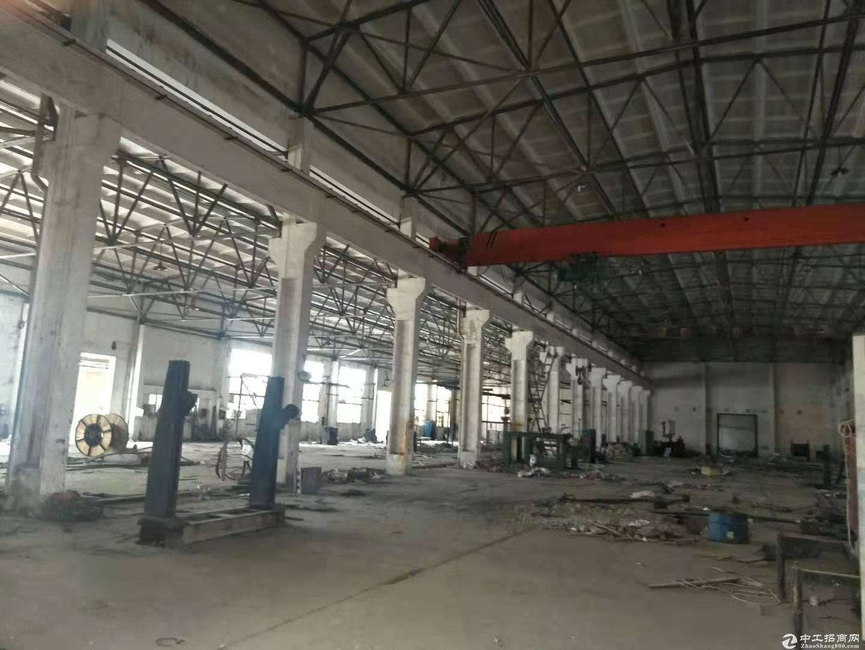 盘龙城球馆3000平米,可分租,高8米,羽毛球,蓝球均可