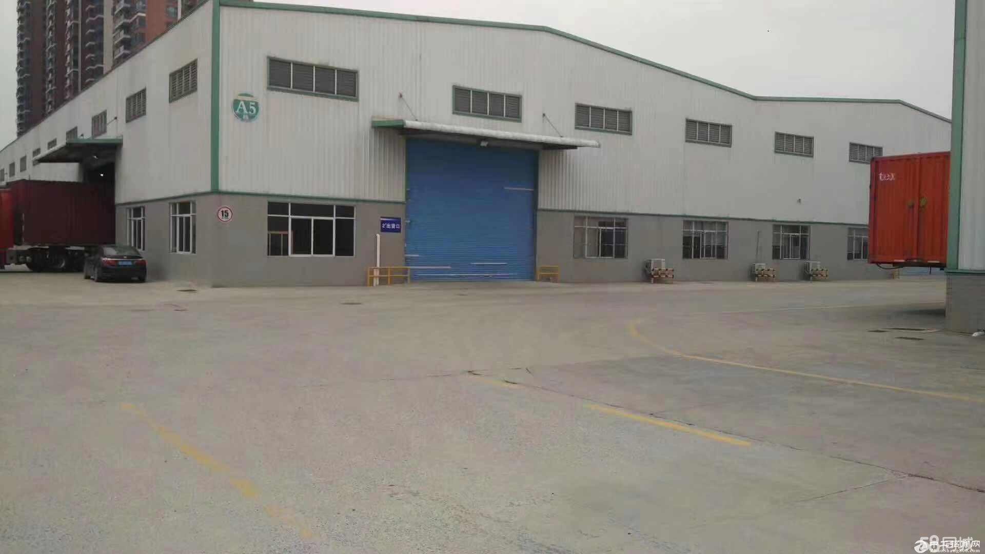 钟村3000方仓库、物流厂房出租,中高9米,近高速-图3