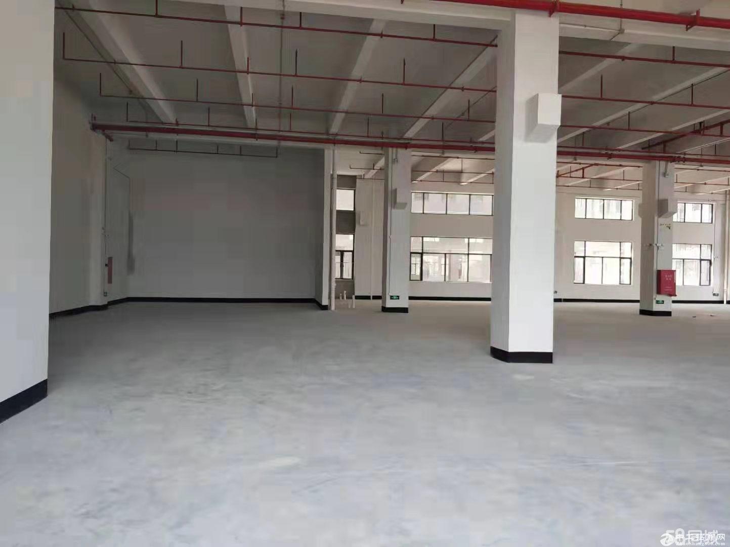 顺德伦教一楼1200方标准出租,有证,适合做纸业等