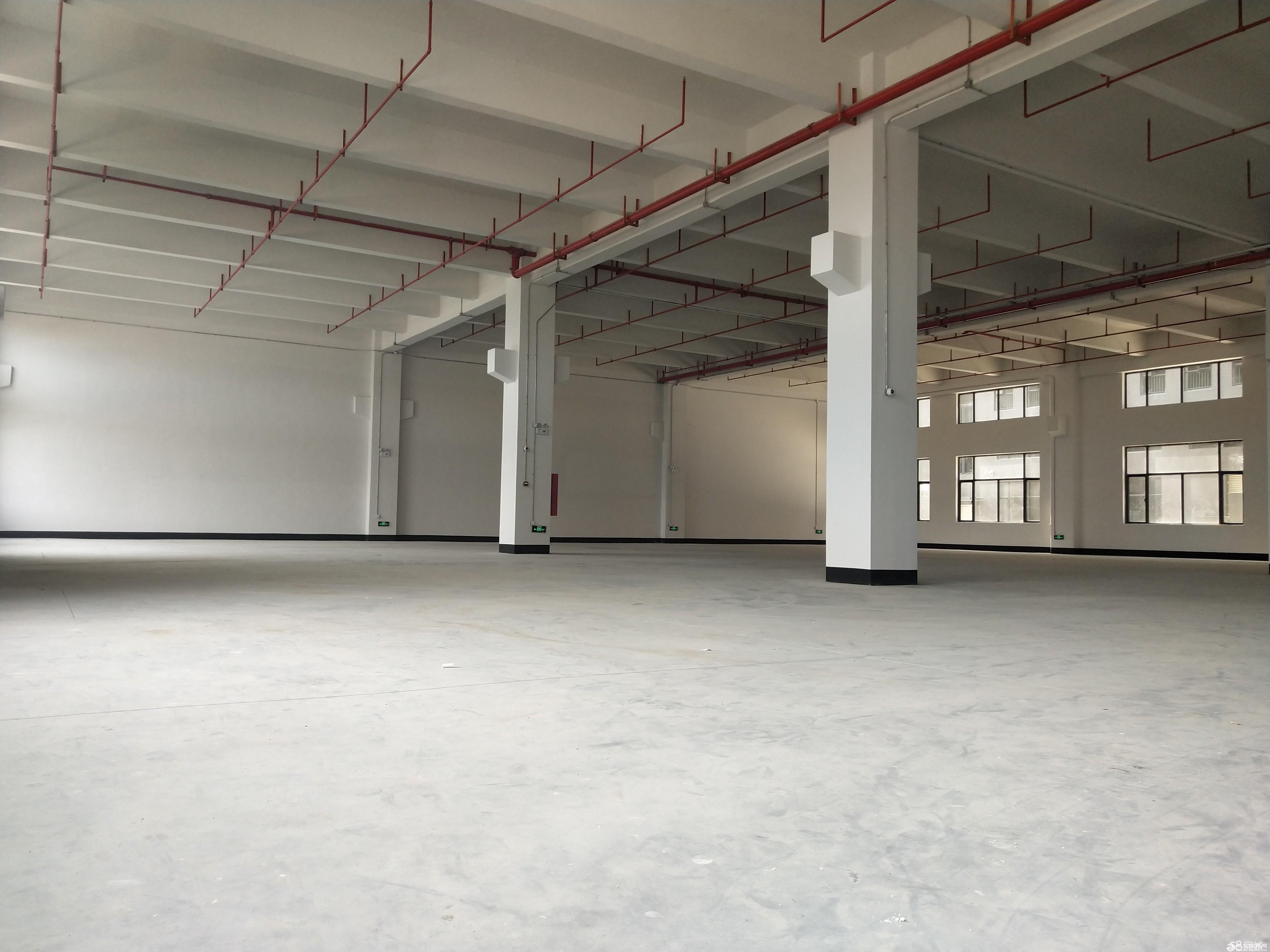 可办环评,有证,陈村工业园标准厂房一楼2000方厂房出租