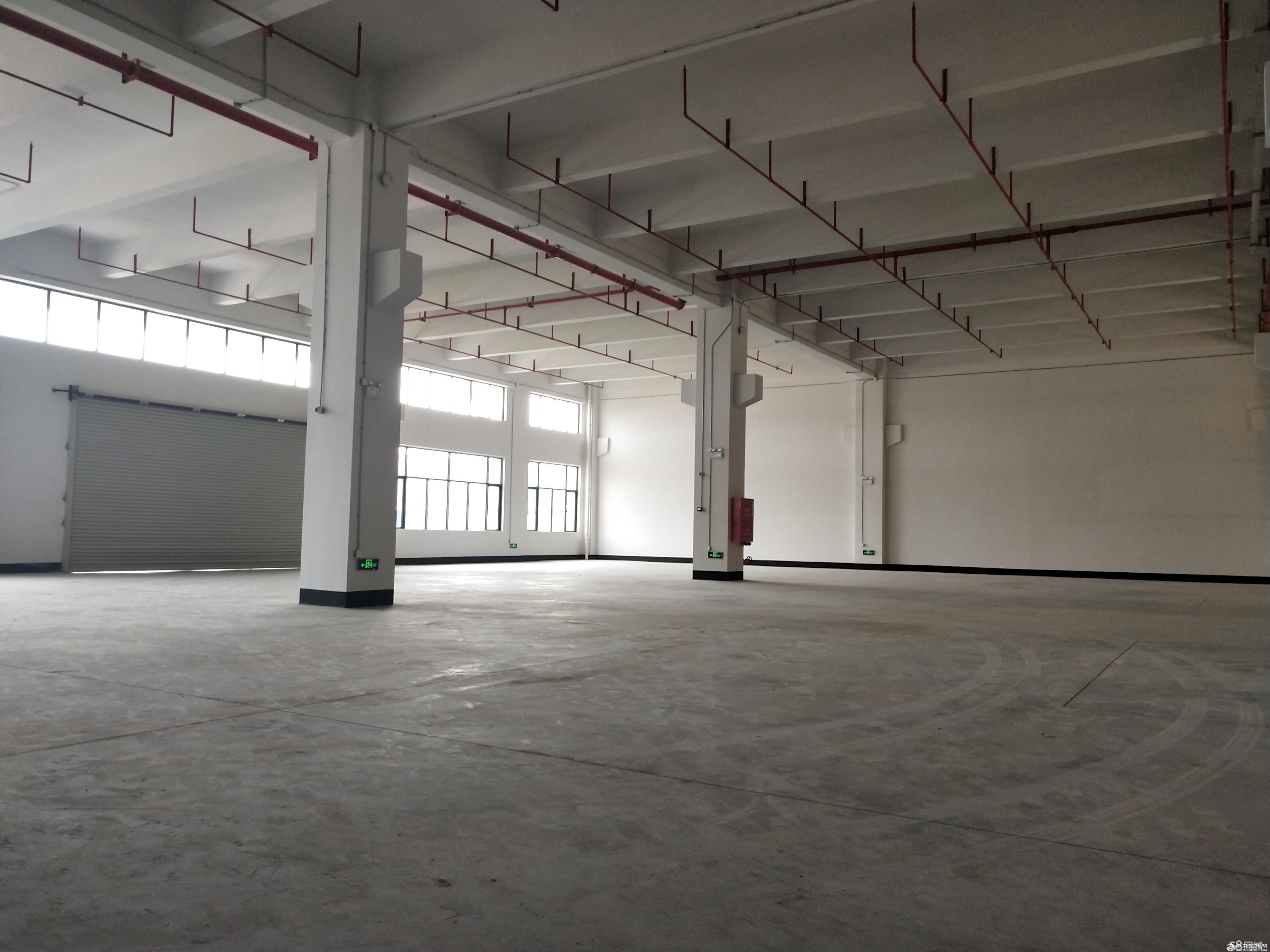 可办环评,有证,陈村工业园标准厂房一楼2000方厂房出租-图3
