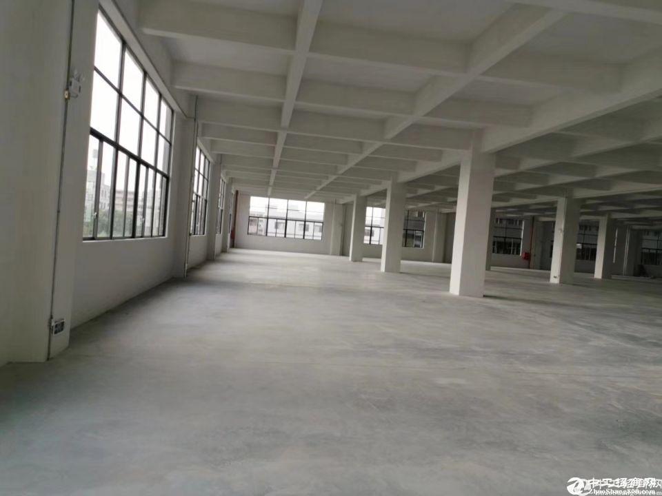 番禺南村5000平方原房东出租标准厂房证件齐全排污管道房产证