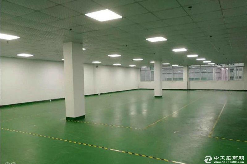 龙华大浪30000平工业园厂房招租,仓库办公室200平起租。
