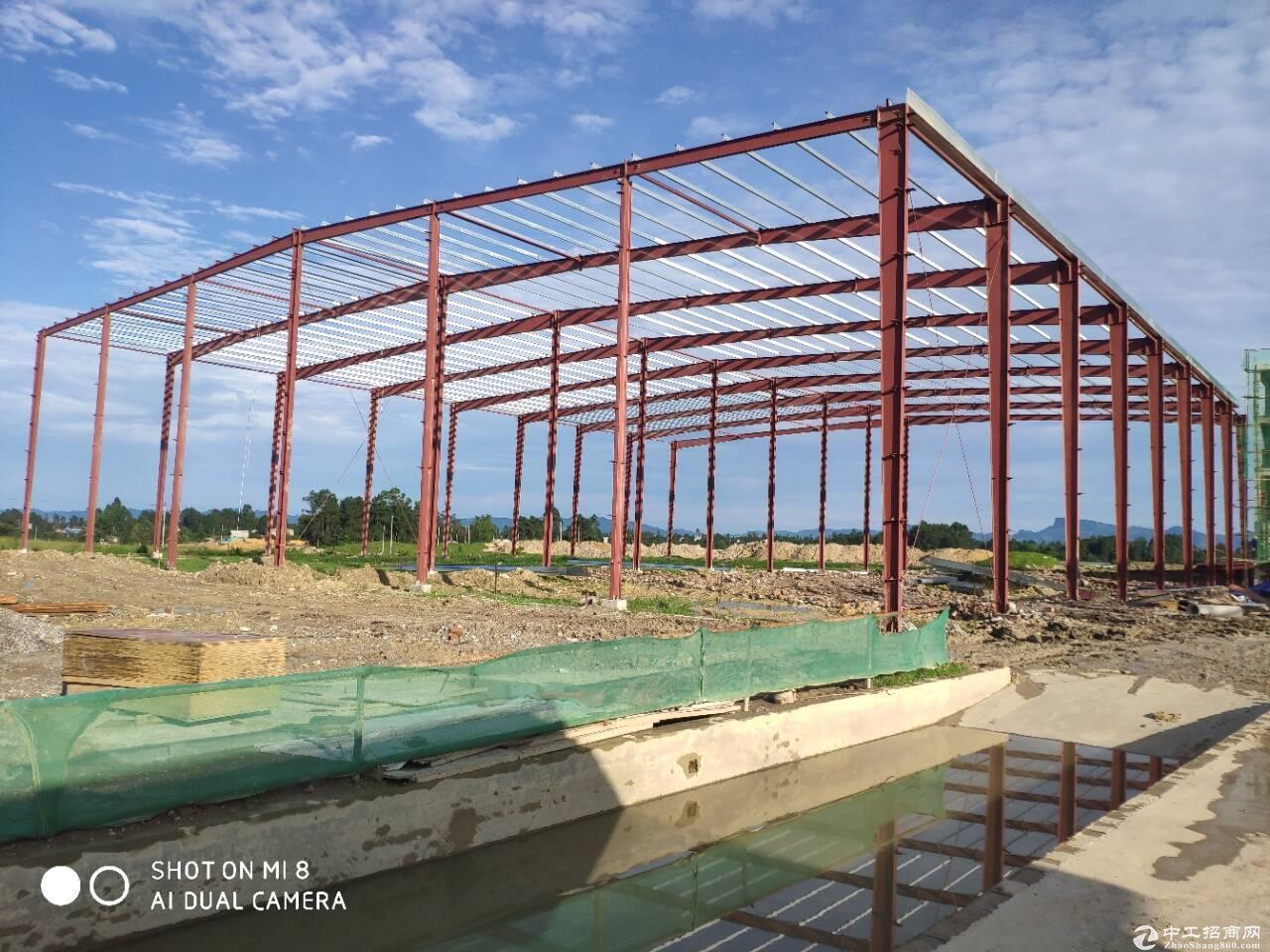 产业园单层钢结构全新厂房-图2