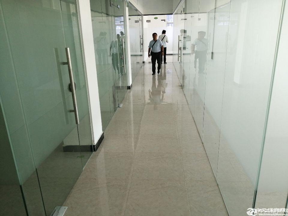 龙华布龙路950平独栋带装修厂房招租