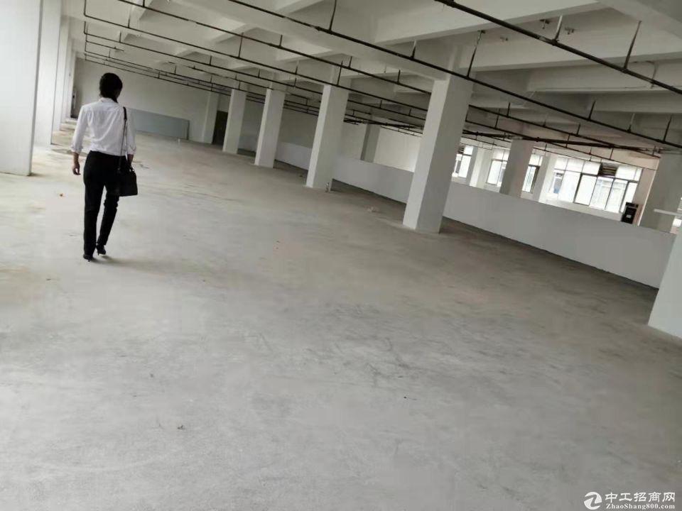 厚街镇新塘村新出2400平方整层厂房仓库出租,形象好租金便宜