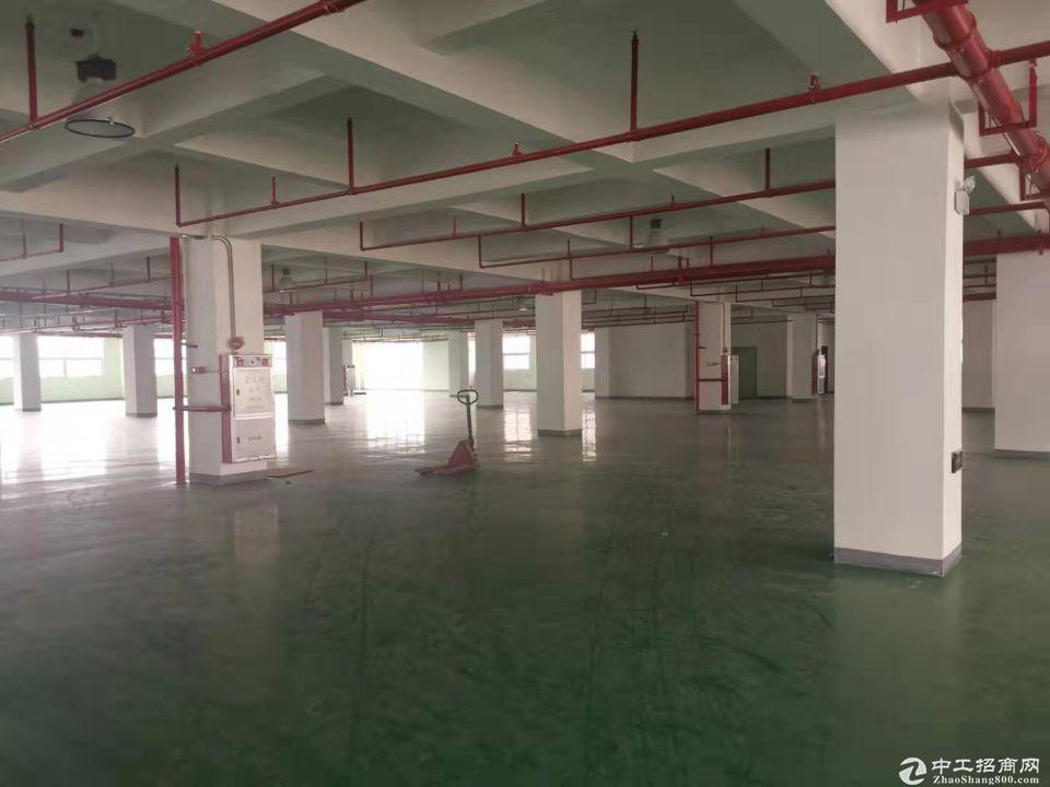 广州黄埔区文冲新出独栋一层2210平1到4楼