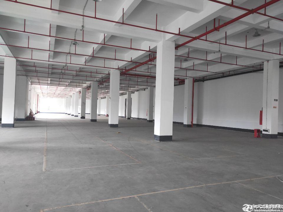 广州黄埔永和开发区标准厂房仓库2310平方招租