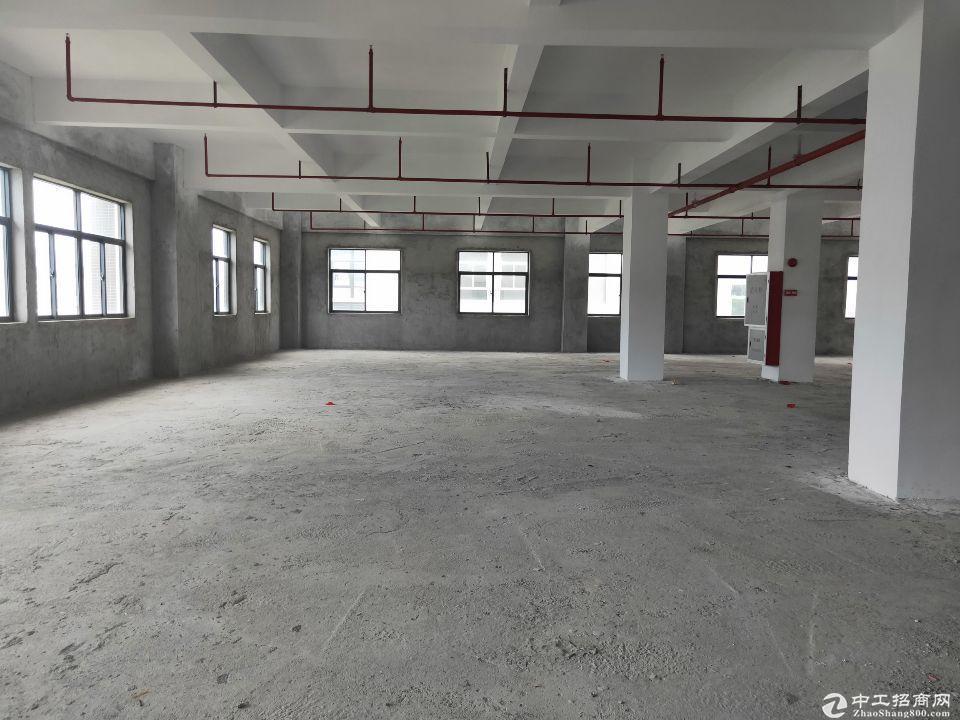 厚街镇新塘村新出标准厂房仓库1600平方招租,形象好