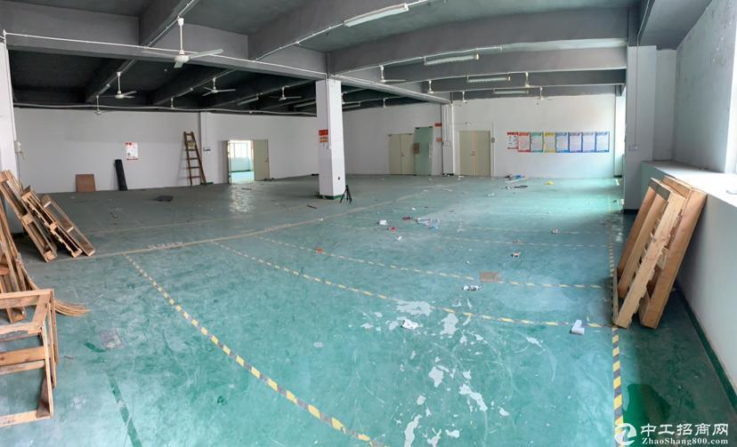 坑梓龙田 新出红本厂房  3楼1000平方招租、带装修