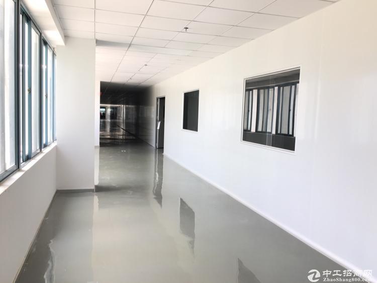 坪山中心、电商产业园厂房出租,送全新办公家具,50平方起分租