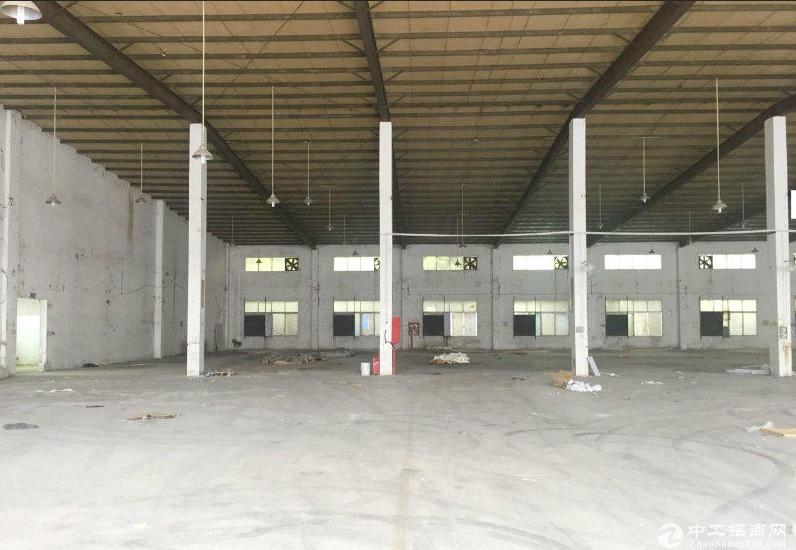 9米高一楼仓库出租龙岗观澜公明平湖横岗光明厂房