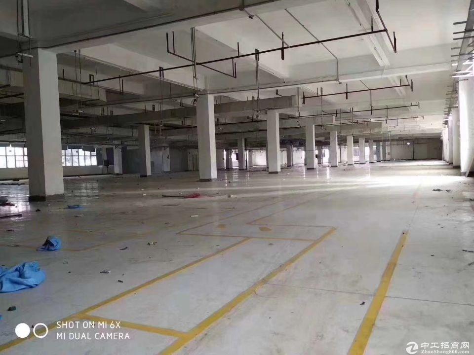 坪山大工业区2楼5000平物流仓库出租丙二类消防