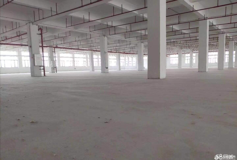南沙区大岗有证10140方标准厂房,可做展厅,仓库,电子 .食品