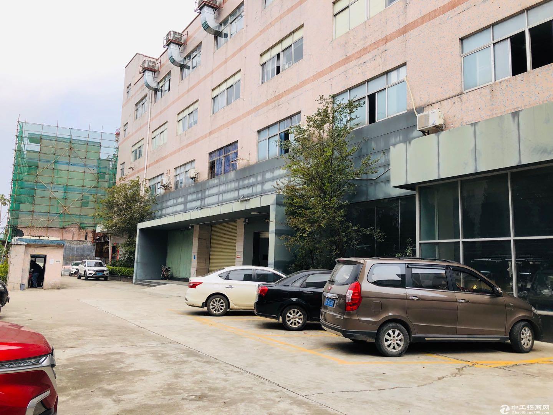 横岗沙荷路边 万骏隆商场对面 一楼厂房750平