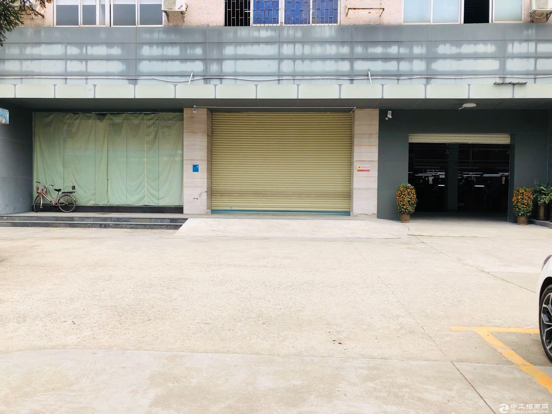 横岗沙荷路边 万骏隆商场对面 一楼厂房750平图片2
