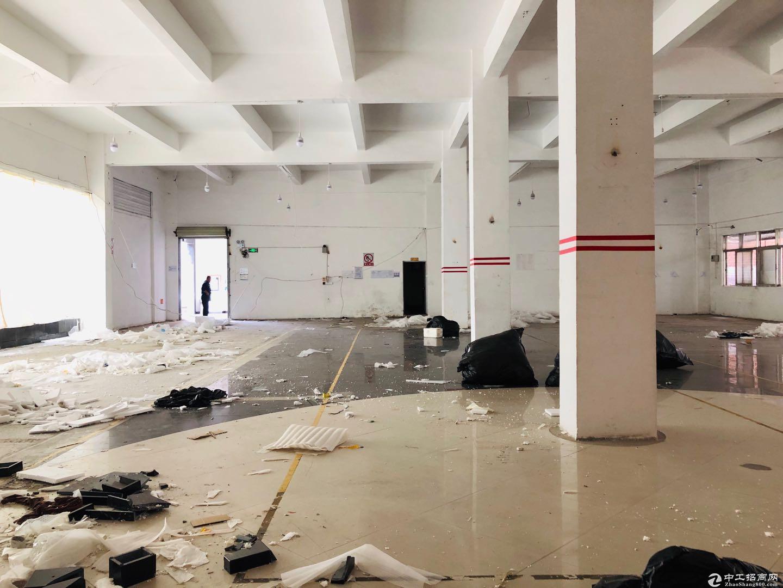 横岗沙荷路边 万骏隆商场对面 一楼厂房750平图片4