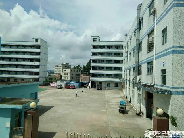 龙岗坪地红本厂房3800平独院招租水电现成.