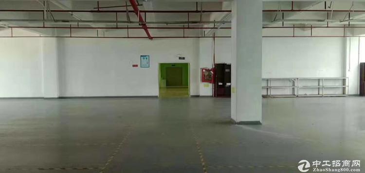 龙华观澜福民新出豪华装修厂房2楼1600平方,办公室+前台+仓库