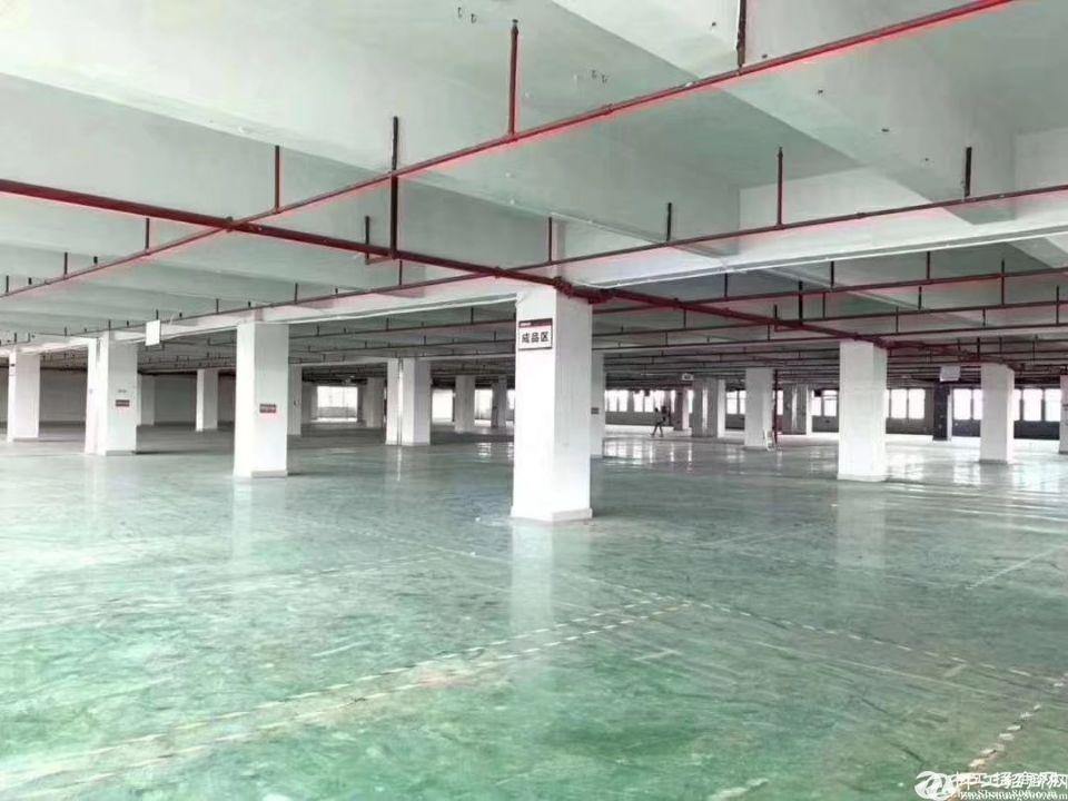 石岩新出楼上整层厂房3100~5600平米出租
