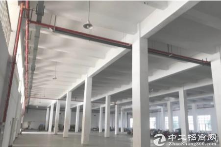 清溪三中新出1000平标准原房东仓库出租,层高8米