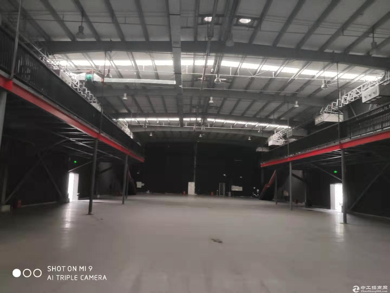 蛇口大仓库面积2000--10000层高10米