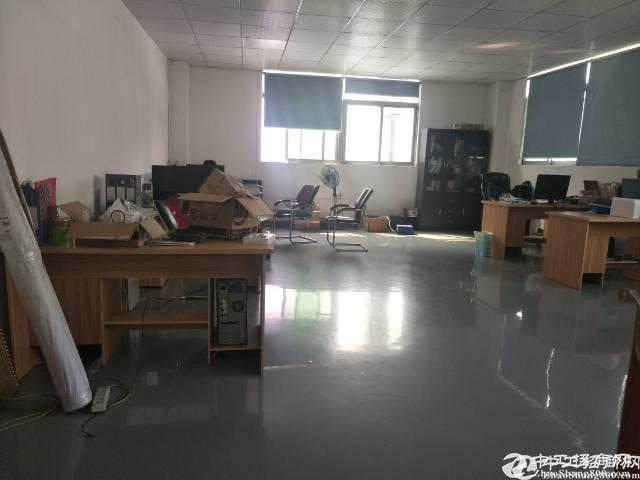 原房东清溪新出楼上采光好600平方厂房打包价7200元..