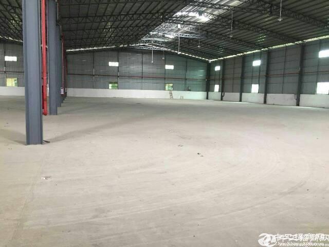厚街镇沙塘村新出原房东面积实量6米单一层厂房仓库能进货柜