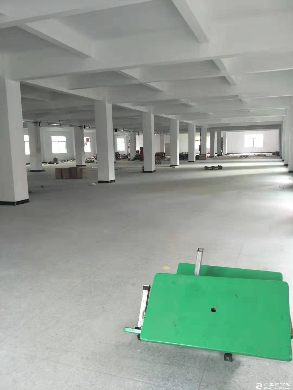 原房东,三中新出一楼厂房3000平,高度5.5米,主马路旁