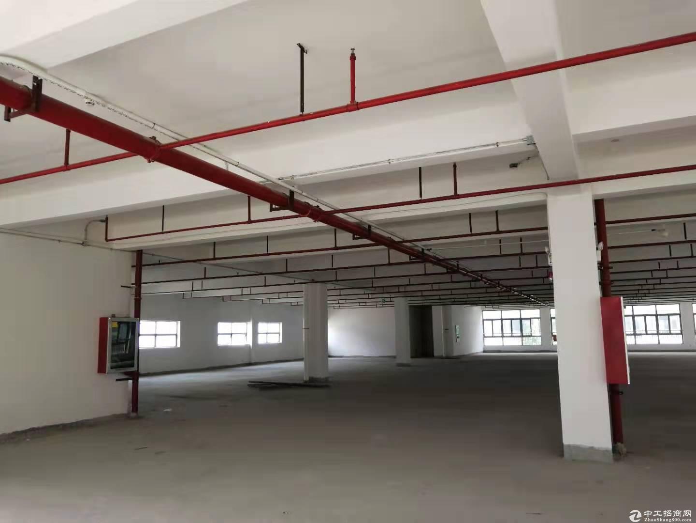 布吉厂房长龙铁口旁工业区8000平厂房仓库招租大小可分租交通好