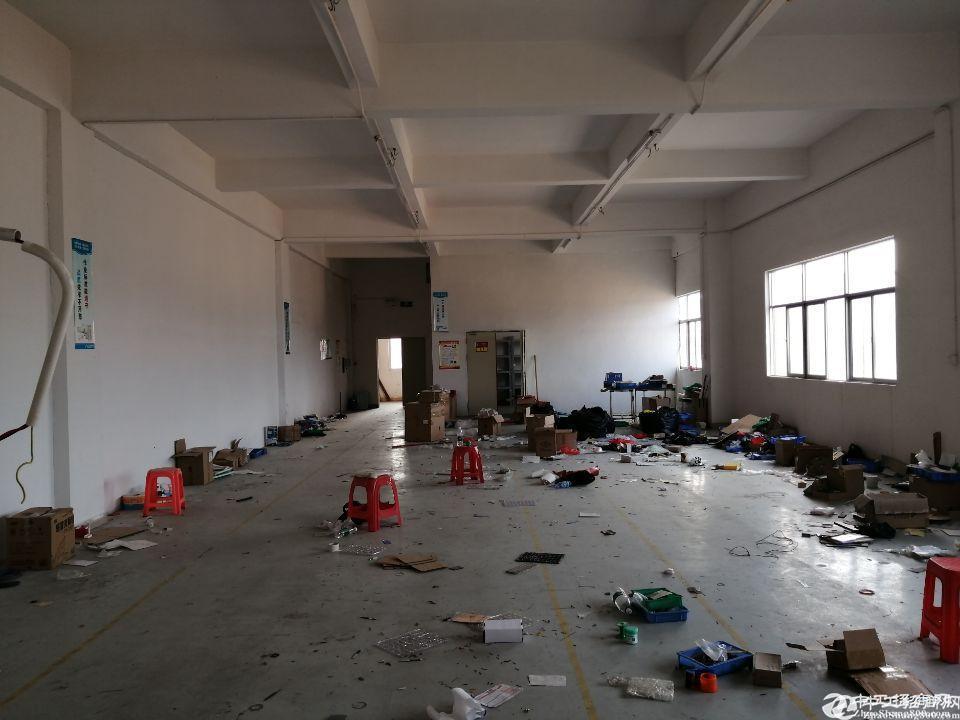 凤岗五联新出原房东标准厂房三楼510平出租带办公室前台
