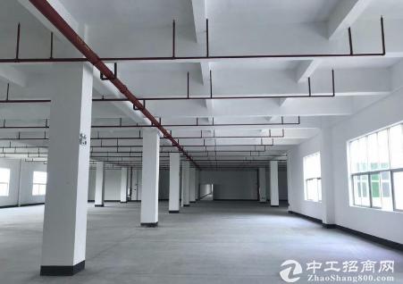 清溪厂房仓库招租500平方—20000平方带办公室装修