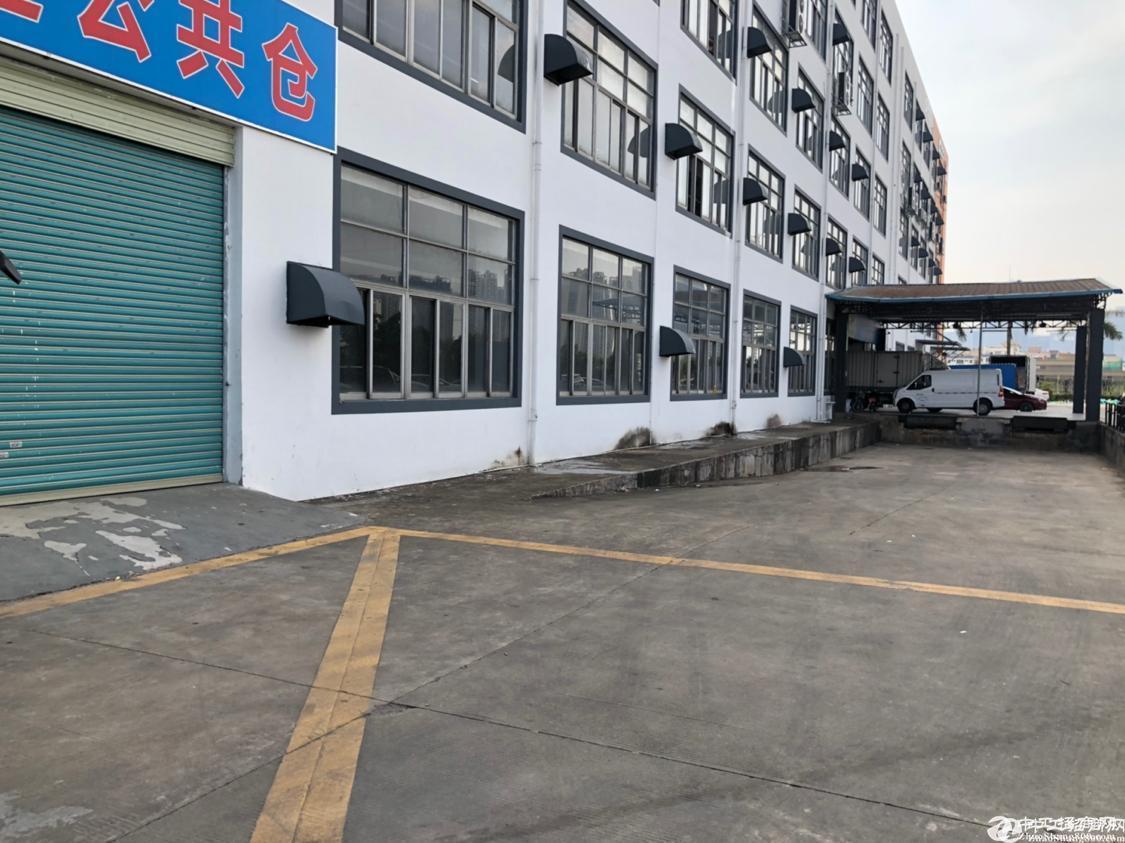 坂田吉华路1楼_2000平标准物流仓库出租_带卸货平台_消防喷淋