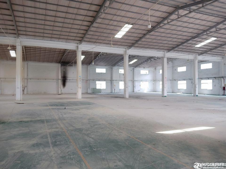 新圩镇长布村独院钢构厂房5000平方米出租证件齐全配电1000