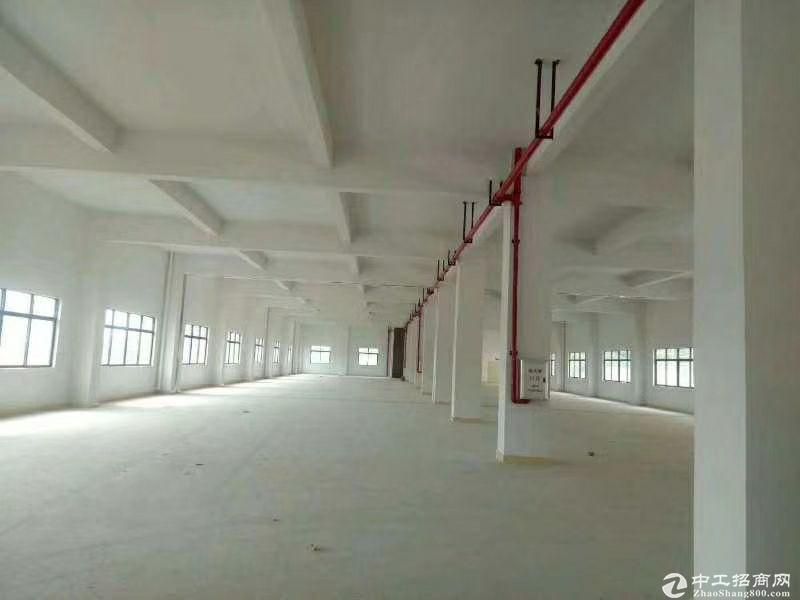 厚街镇赤岭村靠近南城新出原房东标准厂房9000平方可办环评招租