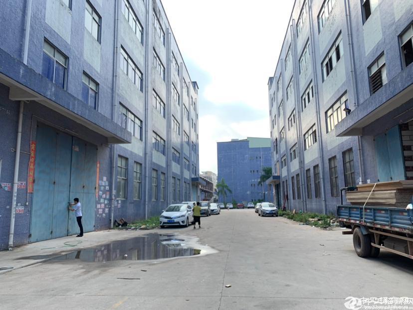 厚街镇赤岭村靠近南城新出原房东标准工业厂房5000,证件齐全,带牛角