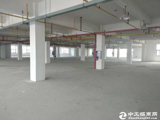 走马岭550平米单层,2-6楼可选,适合食品加工,物流冷链。