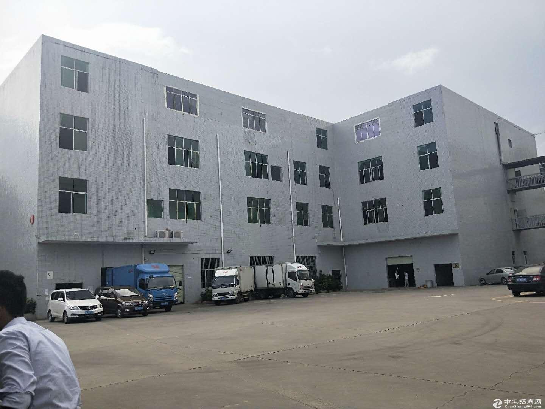 标准一楼1200平带装修可直接进驻 证件齐形象好带现成办公室