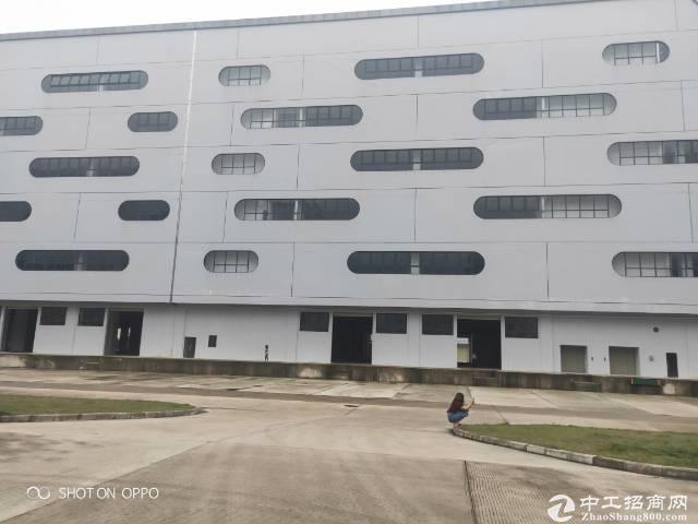 福永兴围机场道新出一楼8000平米带卸货平台消防喷淋出租(可分租)