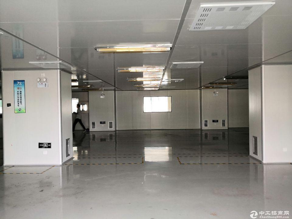 业主急租龙华高新工业园厂房出租仓库出租5000平大小可分