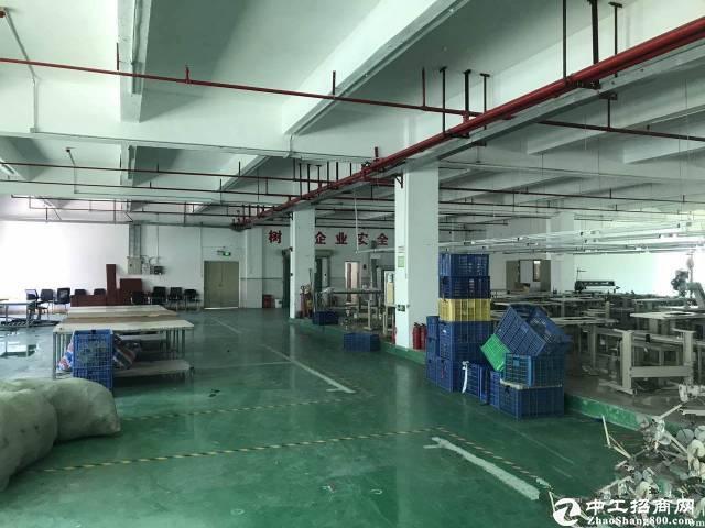 松岗塘下涌工业区3万平方工业园厂房仓库出租200起分带装修可分租