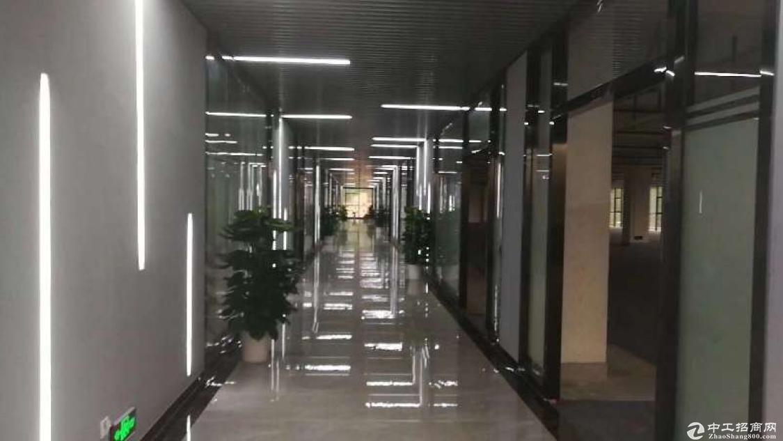 坪地坪西标准独院厂房共5400平有电梯有装修形象好