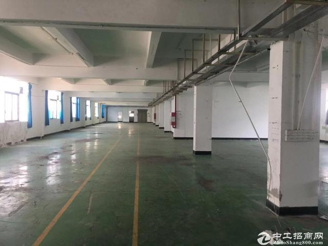 光明李松蓢整层3500平精装修厂房出租