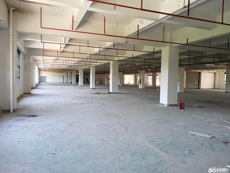 平湖龙华观澜梅观高速出口独栋4000平带红本花园厂房出售