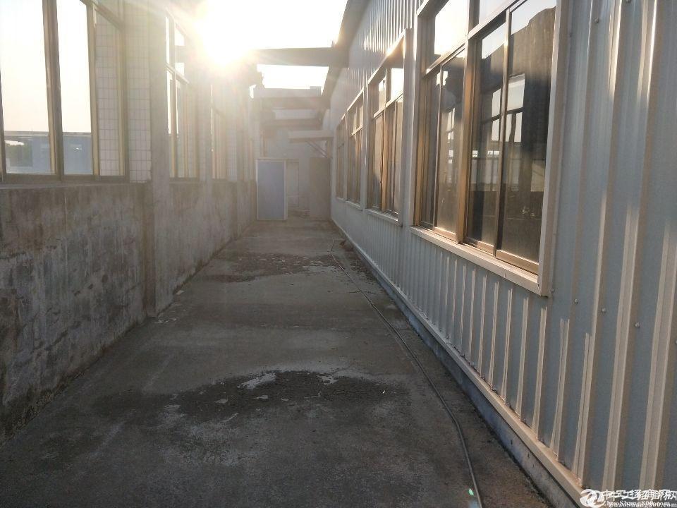 厚街镇溪头村工业区新出原房东独门独院标准一楼钢构厂房1980平招租