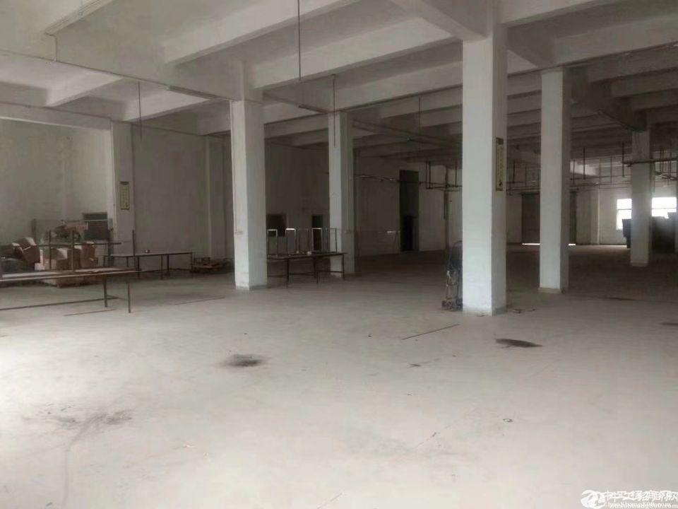 厚街镇溪头村工业区新出原房东一楼原房东标准厂房2000平,可分租,
