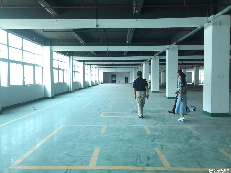 西丽白沙产业园800平大小面积可分租配套齐全有卸货平台