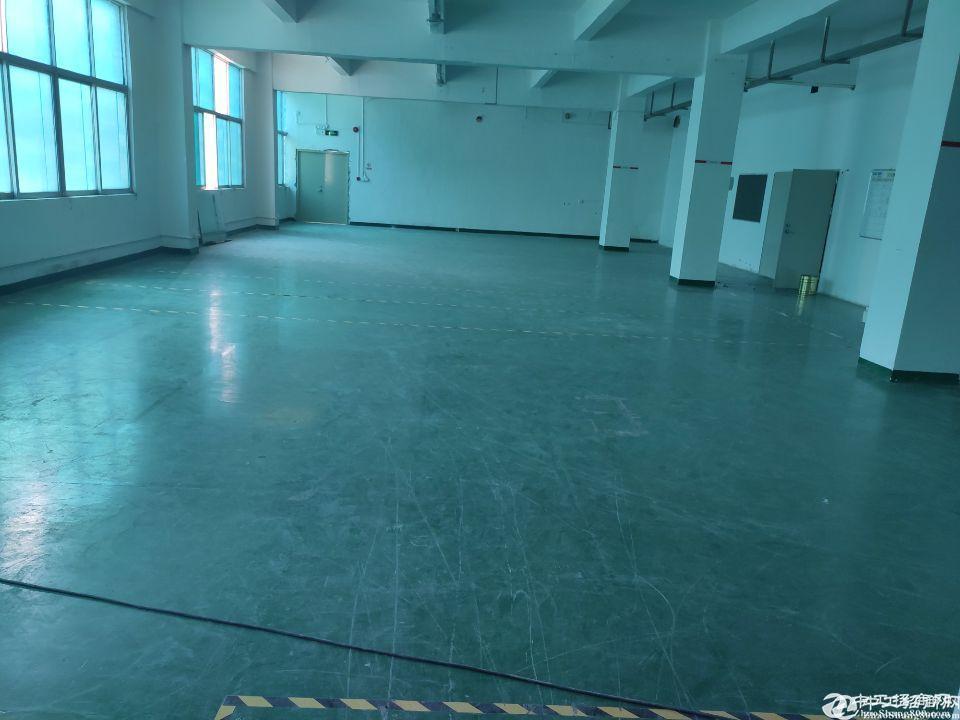 龙岗平湖辅城坳新出3楼1400平米厂房出租