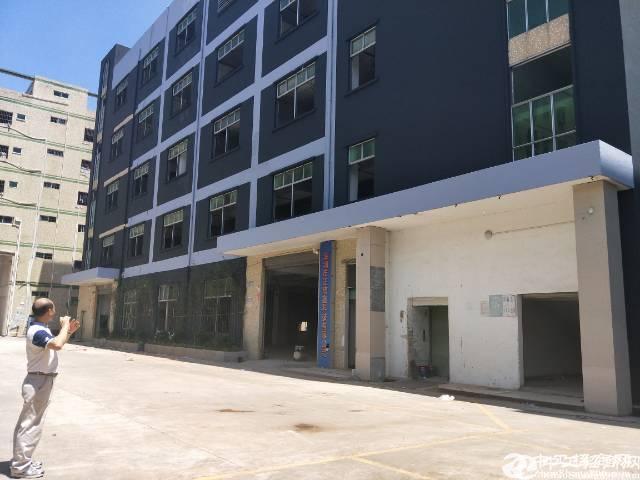龙岗 红本标准独院建筑8200平米 实惠急出售
